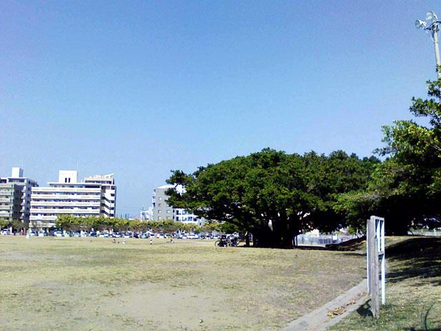 20090215_park